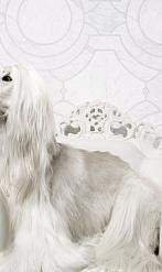 Обои Neo Royal by Marcel Wanders в интерьере