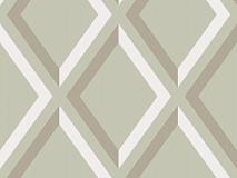 Обои Cole & Son New Contemporary Collection 66-3021