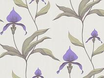 Обои Cole & Son New Contemporary Collection 66-4024