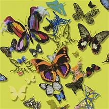 Обои Christian Lacroix Butterfly Parade PCL008/04